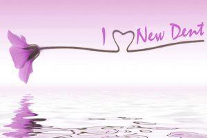 i love new dent